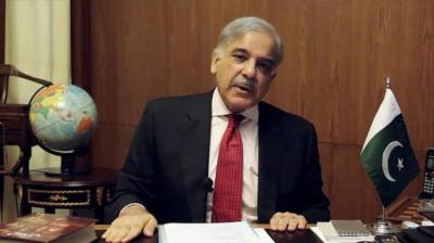 Govt taken effective measures for promotion of merit: Shahbaz
