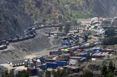 Pak Afghan trade reduced from $2.7 billion to $1.2 billion: Report