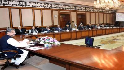Meeting of Council of Common Interests underway