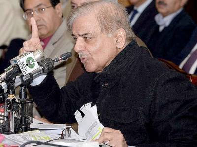 PML-N govt has set new records of selfless services: Shehbaz