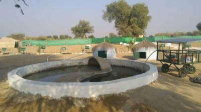 Thar saline water being used for fish, agriculture production