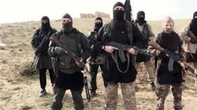 Iranian intelligence has foiled terrorist plots of 30 terror groups on its soil: Report