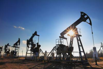 Iran to form oil and gas consortium with India
