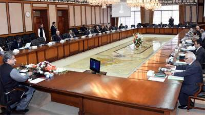 ECC decides to facilitate sugar mills for timely procurement of sugarcane