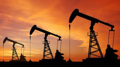 New oil and gas discovery made in Rawalpindi district