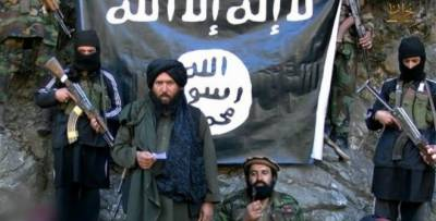 Daesh making strong foothold in eastern Afghanistan along border with Pakistan: Afghan MP
