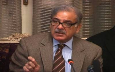 Shahbaz takes notice of death in Lahore by kite thread