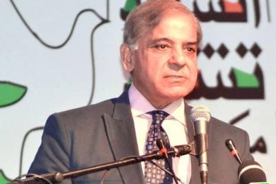 Zardari, Imran flaying Punjab govt to hide failure in Sindh, KP: Shehbaz
