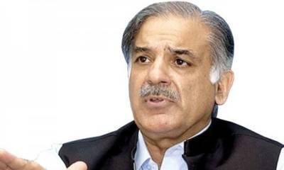 Pakistan on path of development, prosperity: Shahbaz