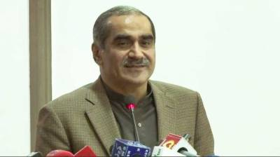 Saad urges political parties to play role for country's progress