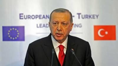 EU expansion without Turkey 'grave mistake': Erdogan