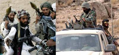 14 Afghan Military commando killed, wounded by Afghan Taliban