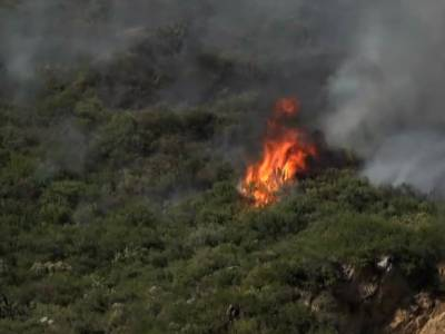 Pakistan army joins fire extinguishing efforts in Margalla