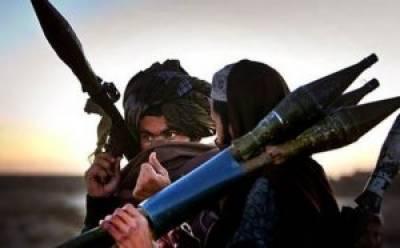 No Chinese militants in Afghan Taliban held area: Taliban spokesman