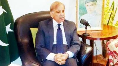 Govt prioritized southern Punjab for basic amenities to masses: Shahbaz