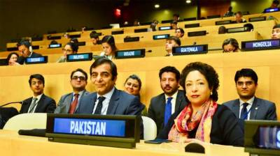 Pakistan wins two key elections at UN