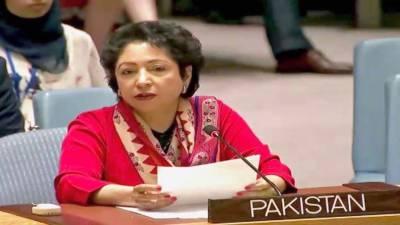 Pakistan has eliminated all terrorist groups through comprehensive strategy: Lodhi briefs US war college