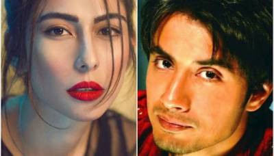 New witnesses surface against Meesha Shafi's allegations