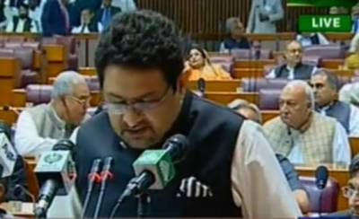 Federal government presents Budget 2018 - 19 amid opposition walkout