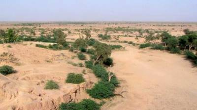 Process of land allotment to landless people of Cholistan underway