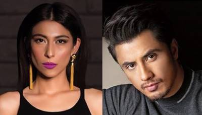 Singer Meesha Shafi responds to remarks of UN Director for her