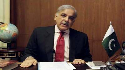 Shehbaz condemns Indian state terrorism, barbarism in Occupied Kashmir