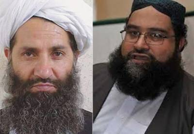 Afghan Taliban sent a letter to Chairman Pakistan Ulema Council: Report