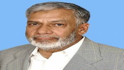 PML-N to win next general election due to its performance: Usman