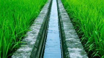 Balochistan govt taking interest in uplift of Irrigation sector