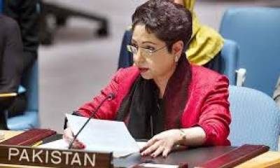 Maleeha Lodhi hits out at Israeli Military in OIC emergency session