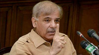1230MW electricity to be generated from HBS Gas Power Plant: Shahbaz