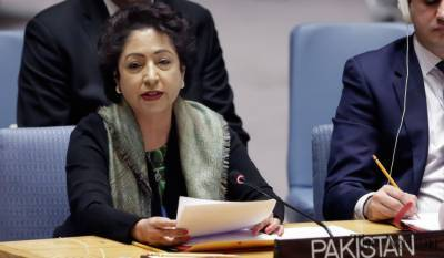 Pakistan forcefully raises Kashmir - Palestine disputes in UN Security Council
