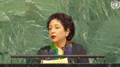 Pakistan calls for focusing on root causes of decades old int'l disputes