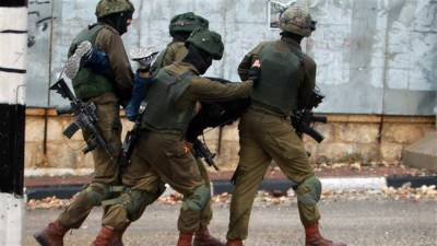 Israeli forces detain nine Palestinians in occupied West Bank