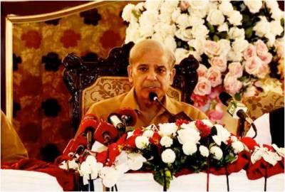 Power generation capacity enhancement greatest achievement of PMLN govt: Shehbaz