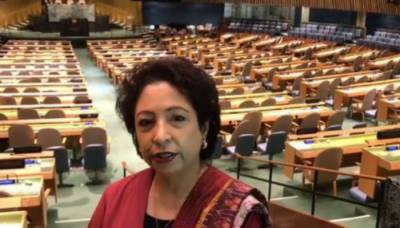 Pakistan's election to ECOSOC vote of confidence from global community: Lodhi