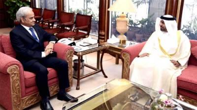 Caretaker PM invites UAE companies to invest in Pakistan