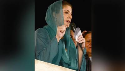 Maryam Nawaz assets details unveiled by ECP