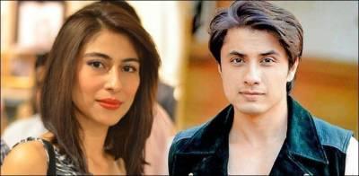 Ali Zafar moves against singer Meesha Shafi
