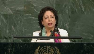 Pakistan has achieved major gains against terrorism: Lodhi