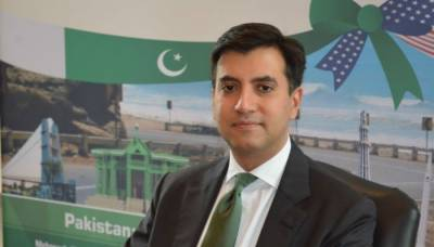 Ali Siddiqui hopes more US firms to invest in Pakistan
