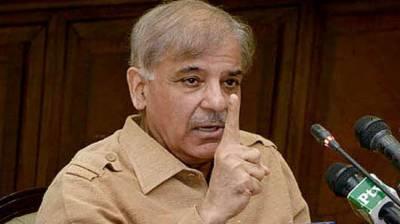 PML-N rejects AC verdict: Shahbaz