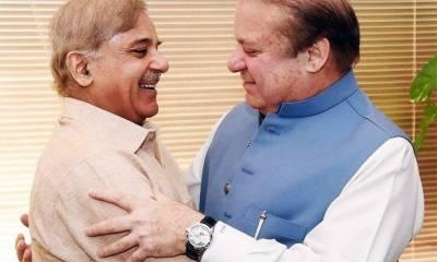 Shahbaz Sharif ditches Nawaz Sharif