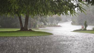 Rain-thundershower with gusty winds expected