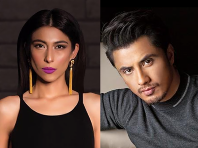 Ali Zafar breaks silence over Meesha Shafi allegations and it's amazing