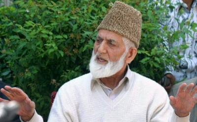 Kashmiris pursuing peaceful movement for right to self-determination: Gilani