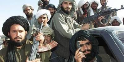 Afghan Taliban capture dozens of villages in Kabul province
