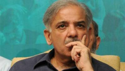 Provide facilities to Nawaz in line with former PM's stature: Shehbaz