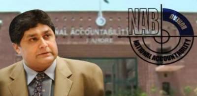 Fawad Hasan Fawad remanded in NAB custody