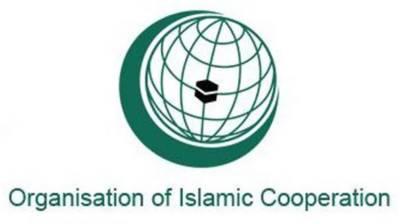 OIC envoys express solidarity with Kashmiris